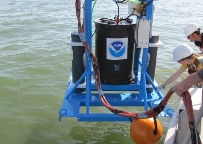 HABs, Bacteria, and Beach Quality Forecasting for the Great Lakes