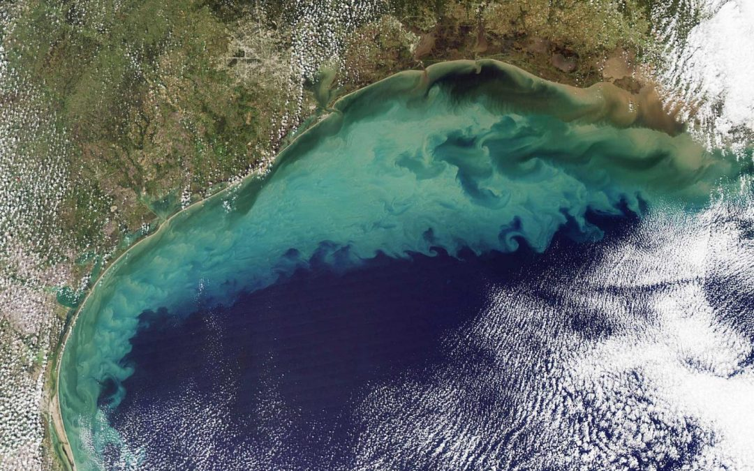 Hypoxia Effects on Resources in the northern Gulf of Mexico