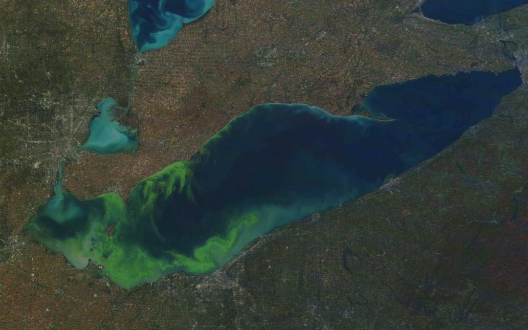 "New Publication: Drought Led to Massive ""Dead Zone"" in Lake Erie"