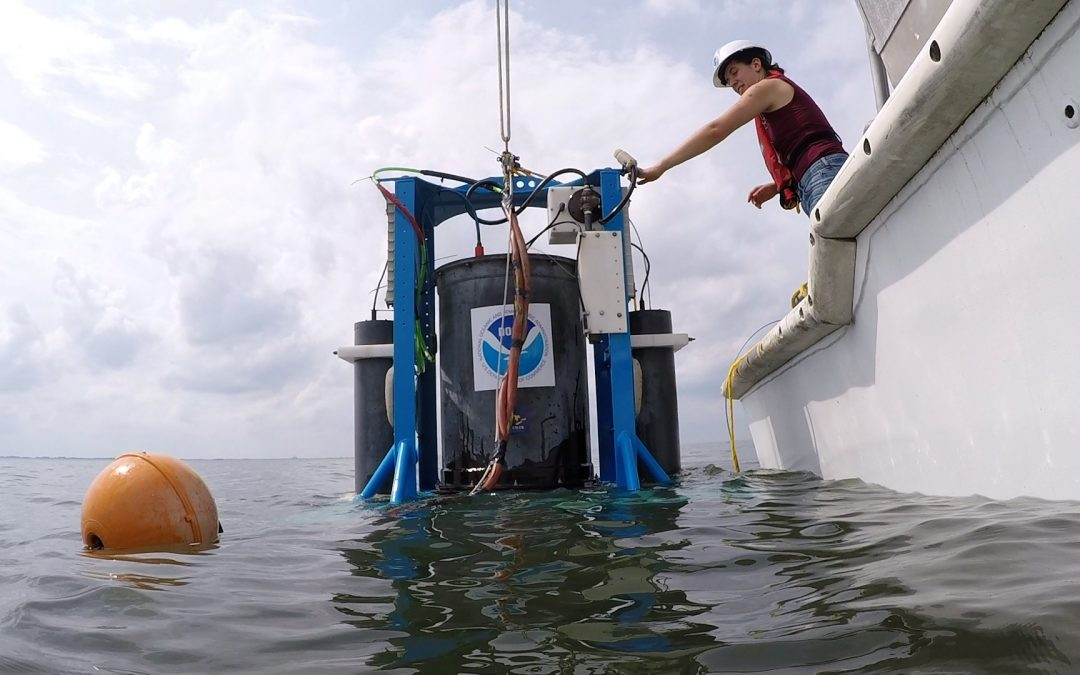 Robotic Lab Tracking Toxicity of Lake Erie Algal Bloom