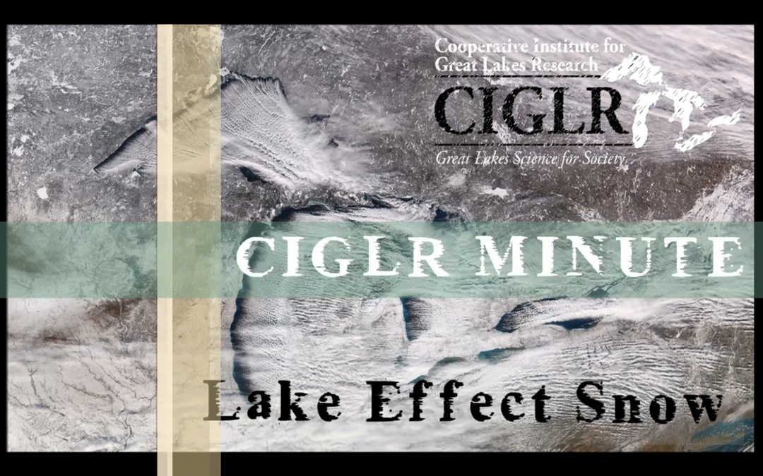 CIGLR Spotlight: Lake Effect Snow Research