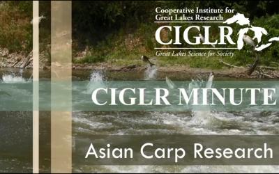 CIGLR Spotlight: Asian Carp Research