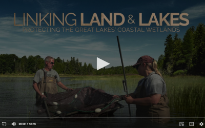 March 31, 8pm, Detroit PBS: Linking Land and Lakes